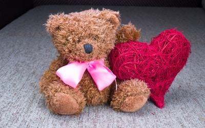 Charity Teddy BEar