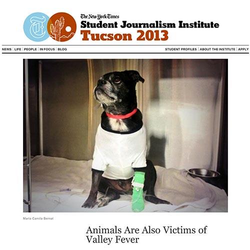 VSCT NYT June 2013 Valley Fever Pets